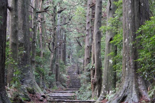 和歌山県 熊野