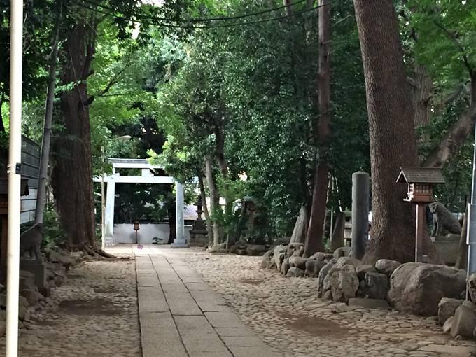 緑豊かな代々木八幡神社